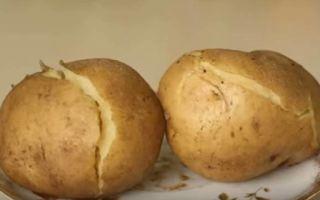 Как варить картошку в микроволновой печи
