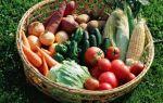 Совместимость картофеля с другими овощами