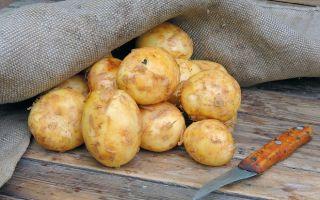 Для чего нужен отвар картофеля