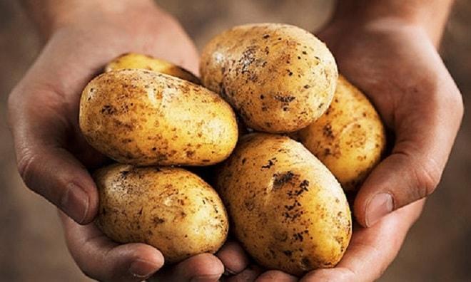 картошка для пюре