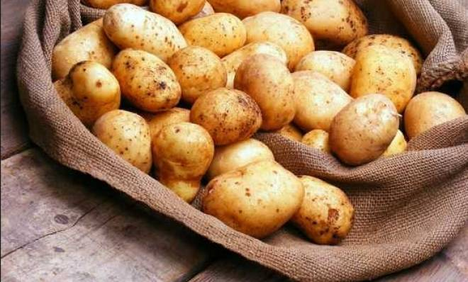 польза и возможный вред картофеля