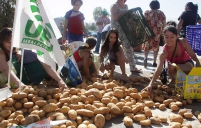 картофель в европе