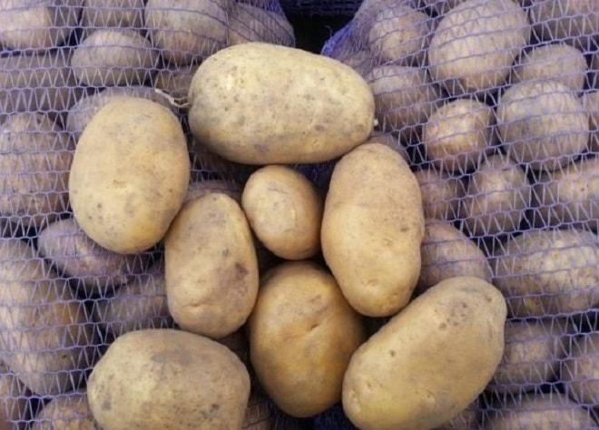 урожай картошки уладар