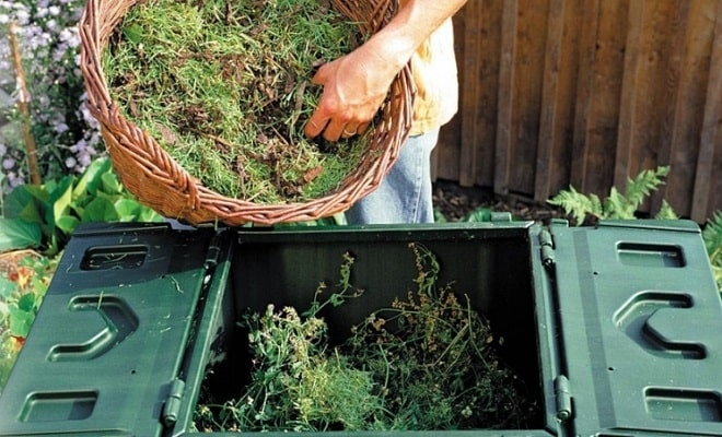 загрузка травы